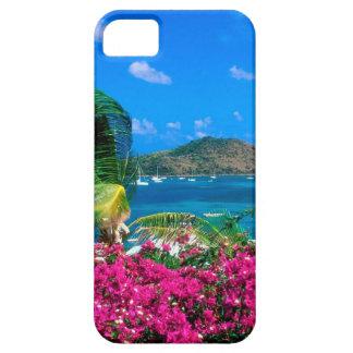 ビーチのフランスのな袋小路セントマーチン iPhone SE/5/5s ケース
