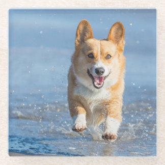 ビーチのペンブロークのウェルシュコーギー犬のランニング ガラスコースター