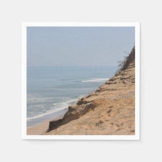 ビーチの写真 スタンダードカクテルナプキン
