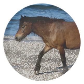 ビーチの南デボンDartmorの子馬の歩く プレート