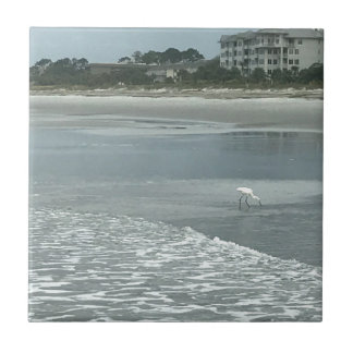 ビーチの小さい鷲 タイル