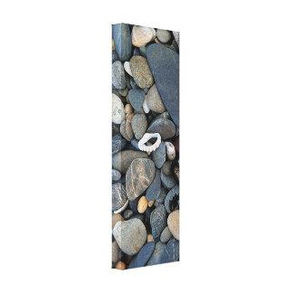 ビーチの小石および貝Coffs Harbour キャンバスプリント