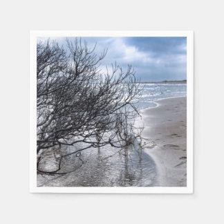 ビーチの枝 スタンダードカクテルナプキン