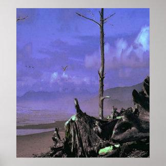 ビーチの流木 ポスター