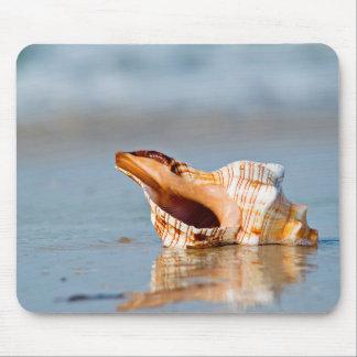 ビーチの海岸のムラサキ貝 マウスパッド