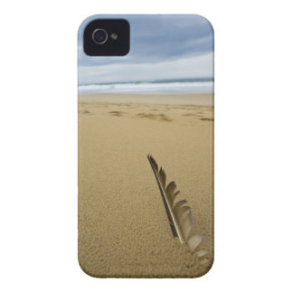 ビーチの砂の鳥羽のクローズアップの眺め、 Case-Mate iPhone 4 ケース