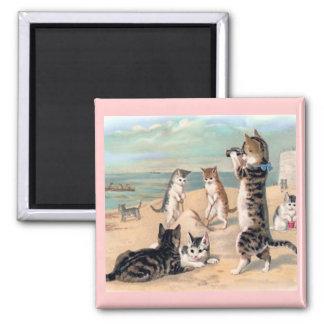 ビーチの磁石の猫のおもしろい マグネット