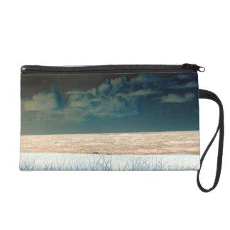 ビーチの空の端正で抽象的なフロリダの逆にされた海岸 リストレット