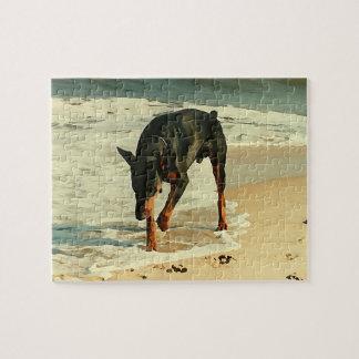 ビーチの絵画のイメージのドーベルマン犬 ジグゾーパズル