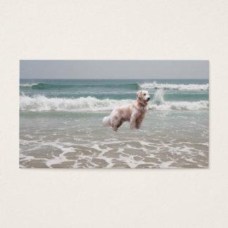 ビーチの繁殖動物の名刺のゴールデン・リトリーバー 名刺