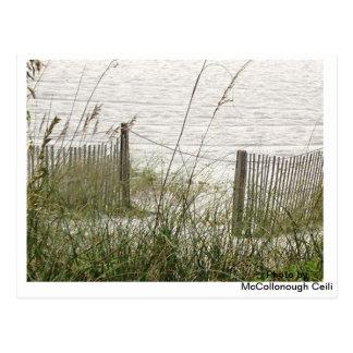 ビーチの草および塀 ポストカード