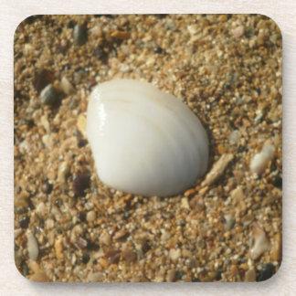 ビーチの貝殻 コースター