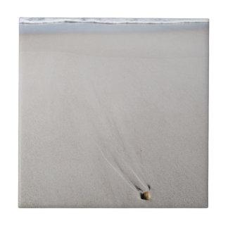 ビーチの貝殻 正方形タイル小
