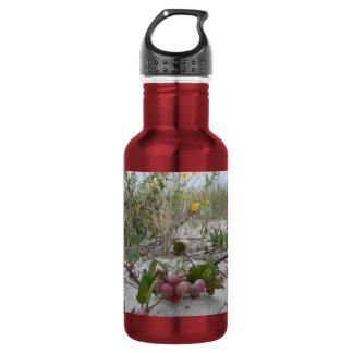 ビーチの野生の果実 ウォーターボトル