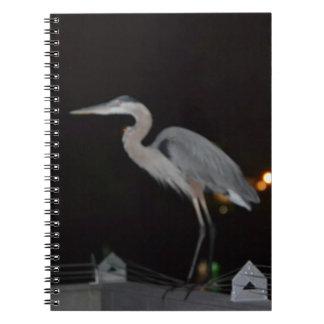 ビーチの鳥のノート ノートブック