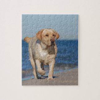 ビーチの黄色いラブラドル・レトリーバー犬 ジグソーパズル