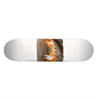 ビーチのColorizedのオレンジのシオマネキ カスタムスケートボード