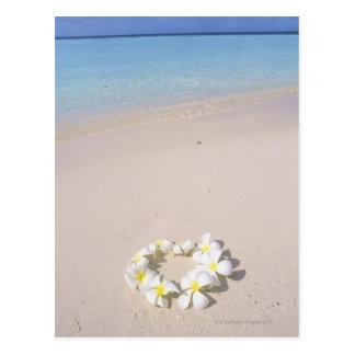 ビーチのFrangipani ポストカード