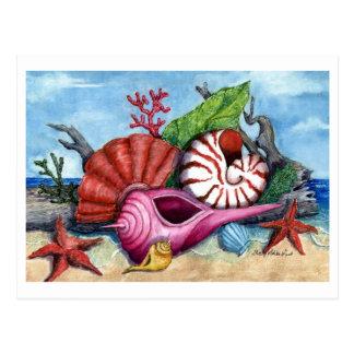 ビーチは絵画の郵便はがきを殻から取り出します ポストカード