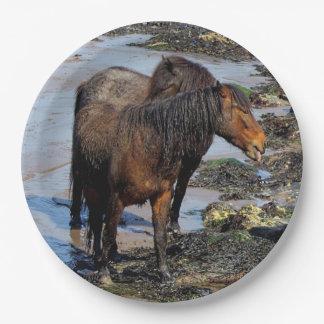 ビーチを楽しんでいるデボン南2 Dartmoorの子馬 ペーパープレート