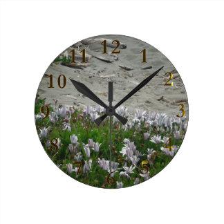 ビーチニュージーランド ラウンド壁時計