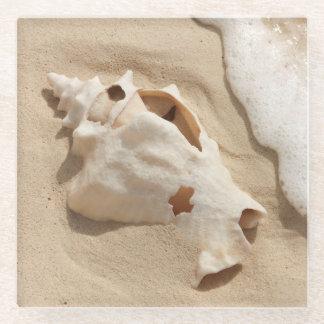 ビーチ|の壮大なトルコ人のカリブ島の貝殻 ガラスコースター