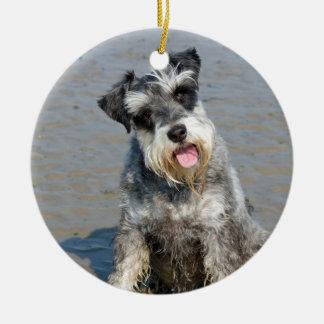 ビーチ、ギフトのシュナウツァーのミニチュア犬のかわいい写真 セラミックオーナメント