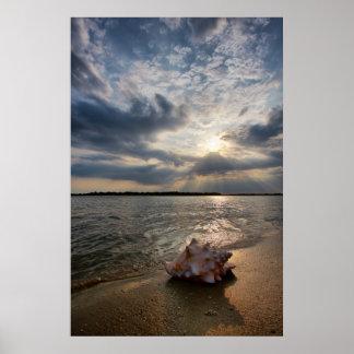 ビーチ|セントオーガスティン、Flのコンシュの貝 ポスター