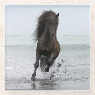 ビーチ|北大西洋の種馬のランニング ガラスコースター