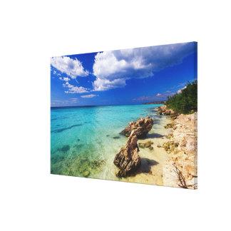 ビーチ、Barahonaのドミニカ共和国、2 キャンバスプリント