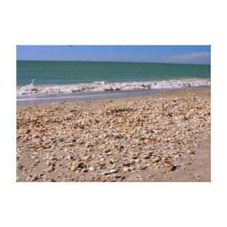 ビーチ- Sanibel Captivaの貝 キャンバスプリント