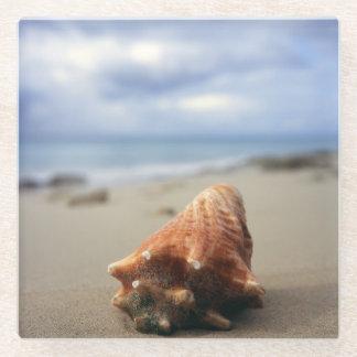 ビーチ| St. Croix、Usviのコンシュの貝 ガラスコースター