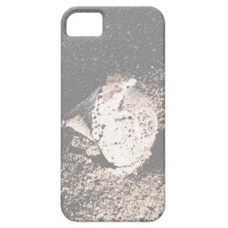 ビーチiPhone5の例の貝殻 iPhone SE/5/5s ケース