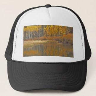 ビーバーの池に反映している金《植物》アスペン キャップ
