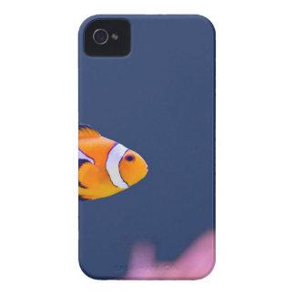 ピエロの魚はピンクのアネモネが付いている青海原で泳ぎます Case-Mate iPhone 4 ケース