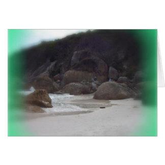 ピカピカのビーチ3 カード