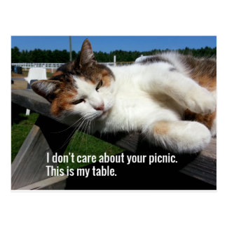 ピクニック用のテーブルの猫 ポストカード