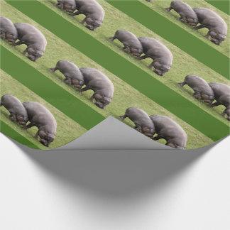 ピグミーのカバの包装紙 ラッピングペーパー