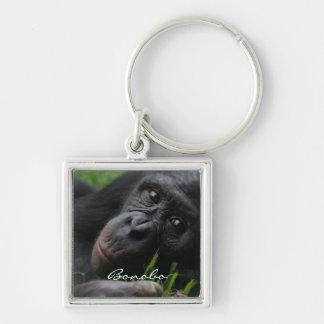 ピグミーチンパンジー シルバーカラー正方形キーホルダー