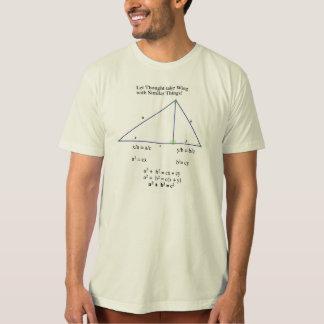 ピタゴラスの定理の類似の証拠 Tシャツ