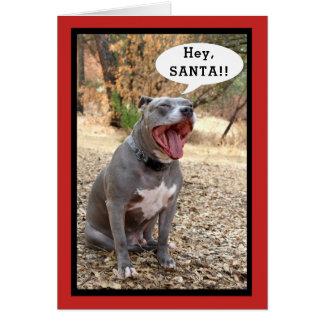 ピットブルのちょっとサンタのクリスマスカード カード