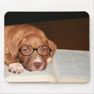 ピットブルの子犬は読みます マウスパッド