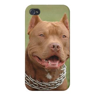 ピットブルの小犬のiphone 4ケースカバー iPhone 4/4S ケース