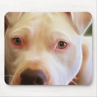 ピットブルの小犬は芸術の写真撮影を注目します マウスパッド