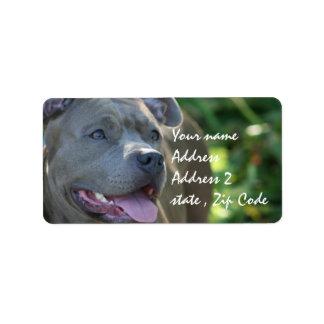 ピットブル犬 ラベル