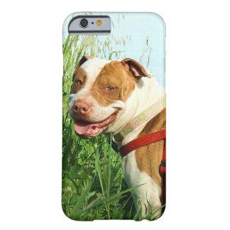 ピットブル犬 iPhone 6 ベアリーゼアケース