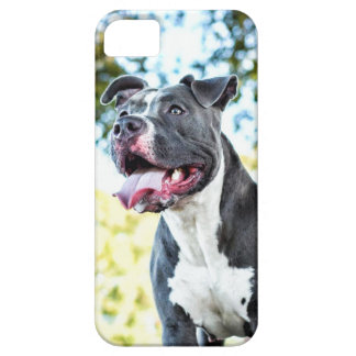 ピットブル iPhone 5 Case-Mate ケース