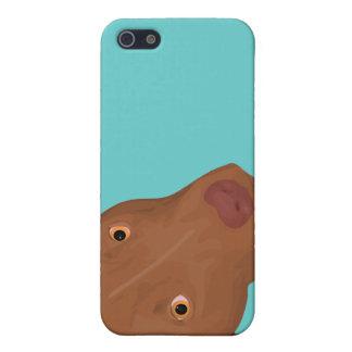 ピット・ブルのかわいいポートレート iPhone 5 CASE