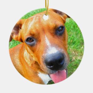 ピット・ブルの子犬のクローズアップ セラミックオーナメント