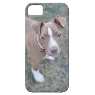 ピット・ブルの子犬のiPhoneの場合 iPhone 5 カバー